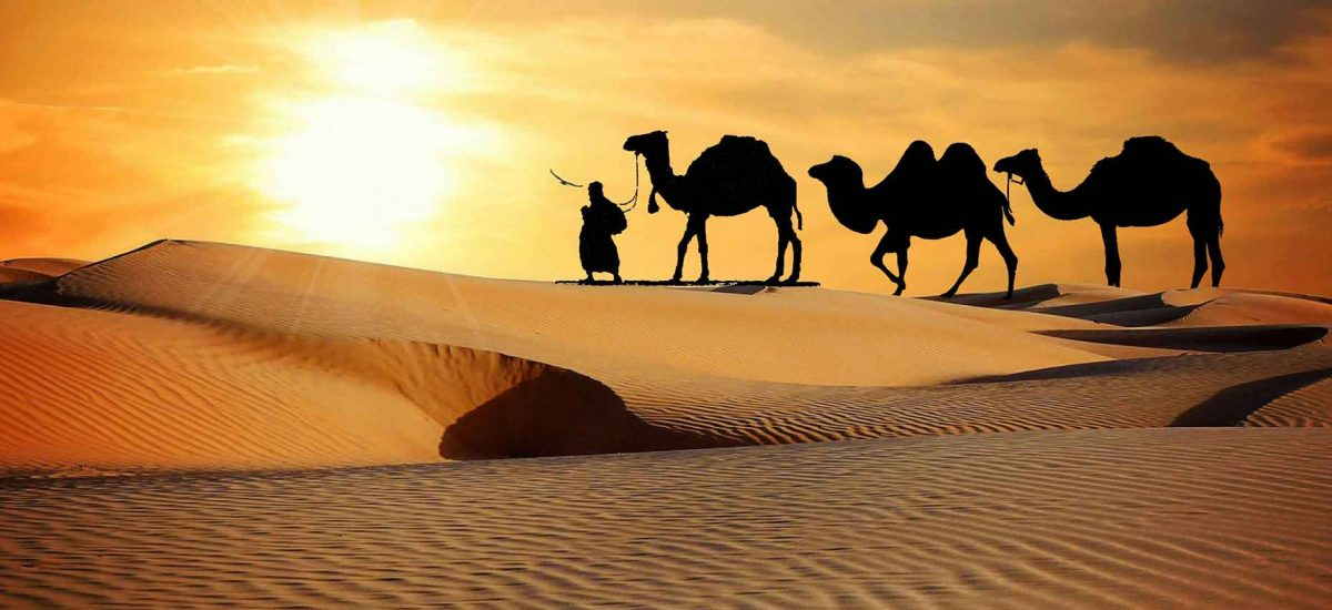 luxury India tour packages, Best Dubai tour packages from USA, European vacation packages, All inclusive Asia vacation packages, Escorted tours packages, Budget tours to Europe, India vacation packages, Dubai vacation packages, America holiday packages